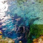 Excursión en Butrinto y en el Ojo Azul_0